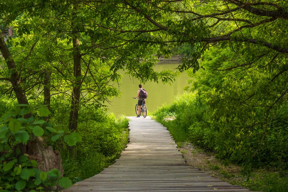 Bratislavský dunajský park – ďalšia vízia pre aktívne nábrežia